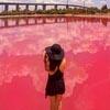 вода в озере стала розовой