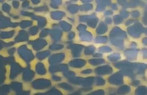 вода с леопардовым принтом