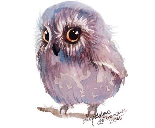 художница любит сов и рисует их