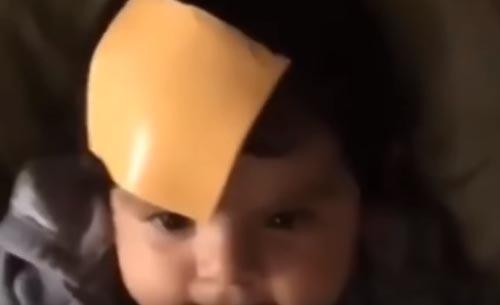 родители кидаются в детей сыром