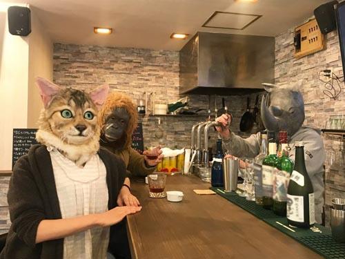 реалистичные маски кошек