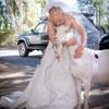 козу пригласили на свадьбу