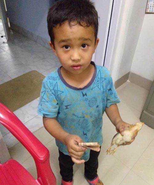 мальчик задавил цыплёнка