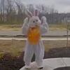 танец пасхального кролика