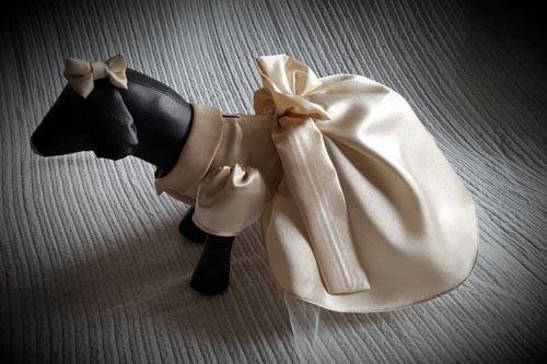 наряд для собак на свадьбе