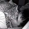 кот спит на лице хозяина