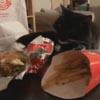 кот хочет съесть чизбургер