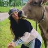 люди целуют коров