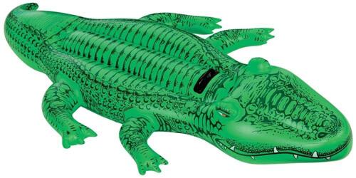 аллигатор и его надувной собрат