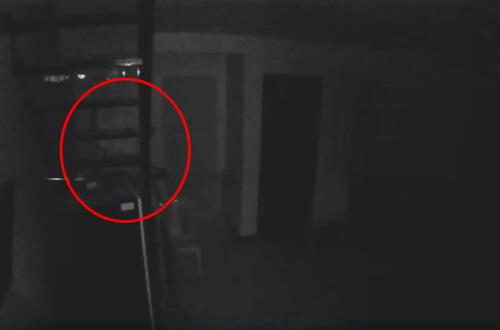 нервное привидение в подвале