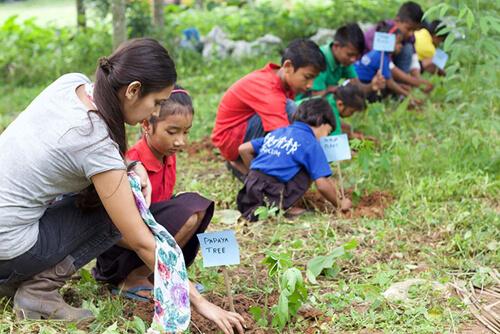 ученики сажают деревья