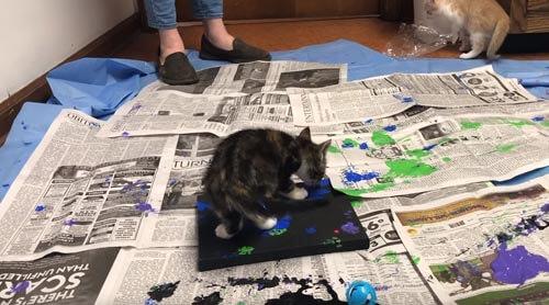 котята рисуют картины
