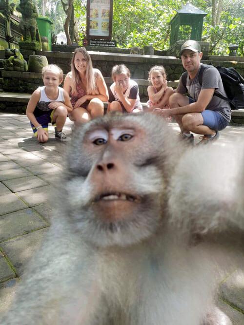 обезьяна на семейной фотографии