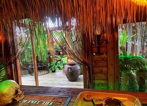 сад превратился в тропический рай