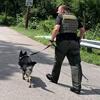полицейские учуяли подозреваемого