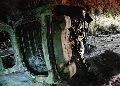 медведь упал на капот машины