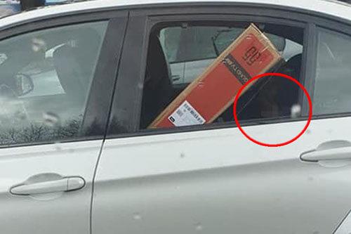 экономный водитель с телевизором
