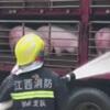 свиней поливают водой