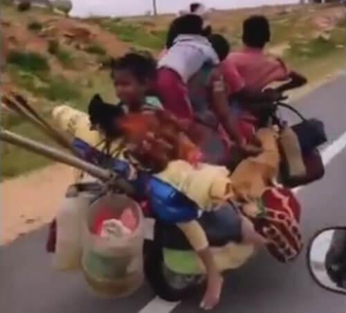 большая семья на мотоцикле
