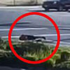 водитель выпал из грузовика