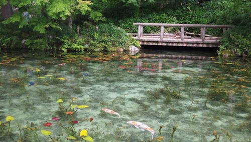 красивый импрессионистский пруд