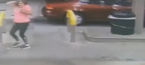 олень ударил водительницу