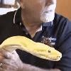воры украли мешок со змеями