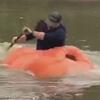 фермер плавает в тыкве