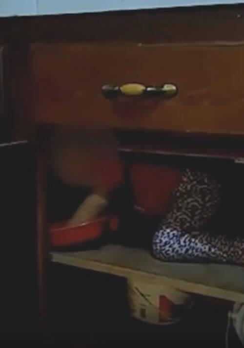 призрачная рука в шкафу