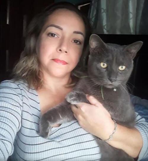тайная двойная жизнь кота
