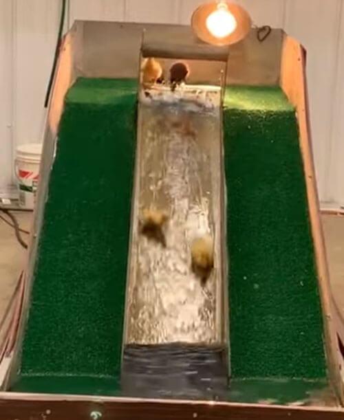 водная горка для утят