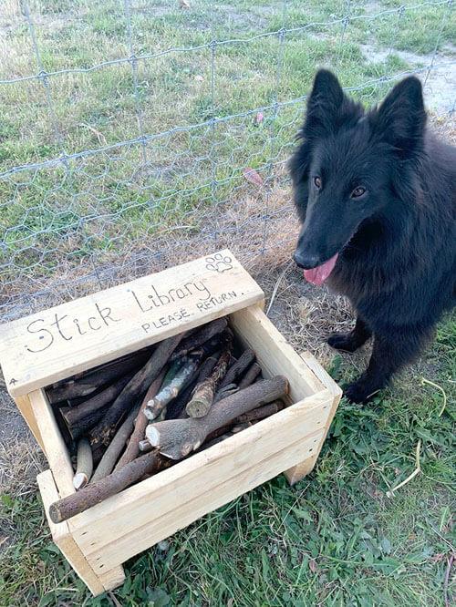 библиотека палок для собак
