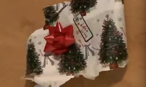 собачка открыла подарок