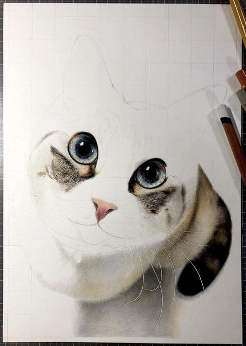 реалистичные рисунки с кошками