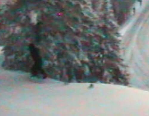 снежный человек гуляет по лесу