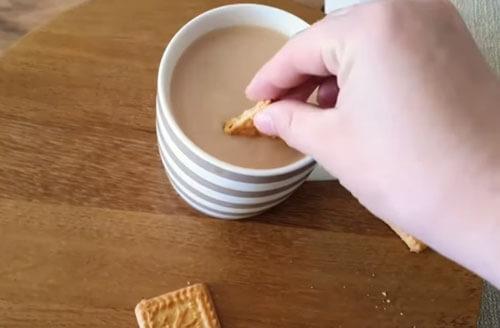 собака ест печенье с чаем