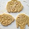 печенье в виде любимцев