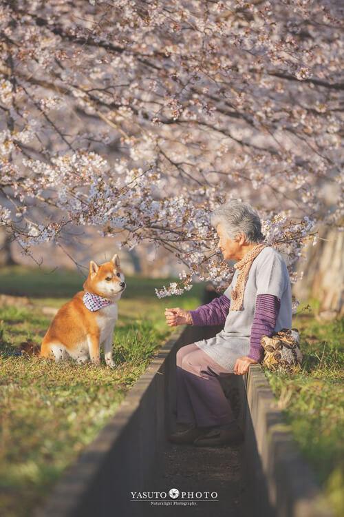 фото бабушки с собакой