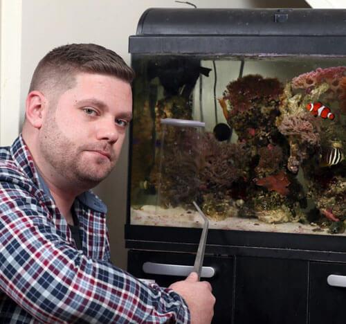 ядовитая обитательница аквариума