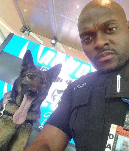 селфи с полицейской собакой