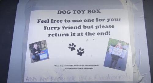 коробки с собачьими игрушками