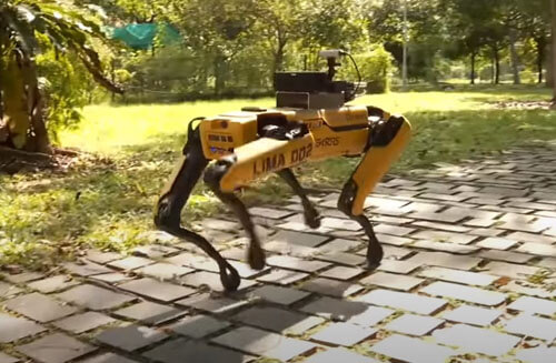 робот-собака гуляет по парку