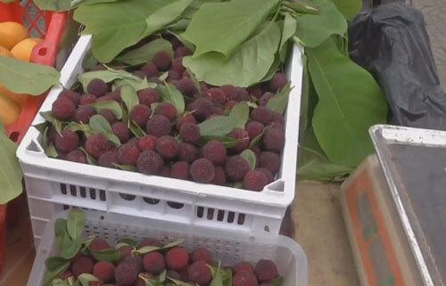 фрукты и ягоды освежили водой