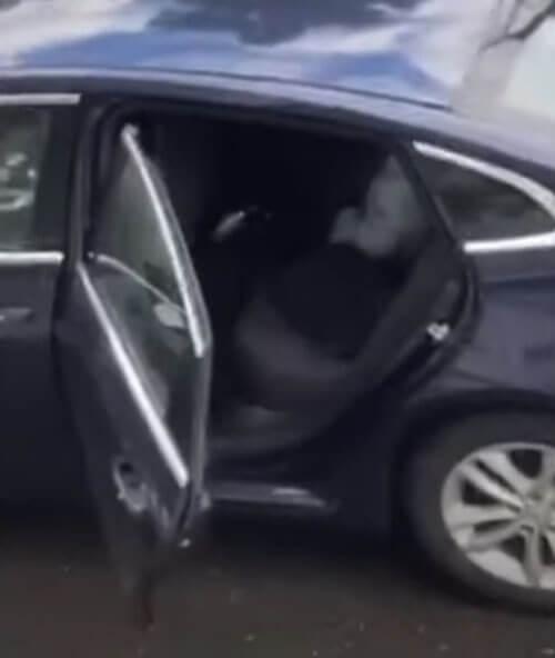 медведь влез в автомобиль