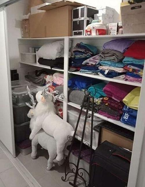неприличная фотография шкафа