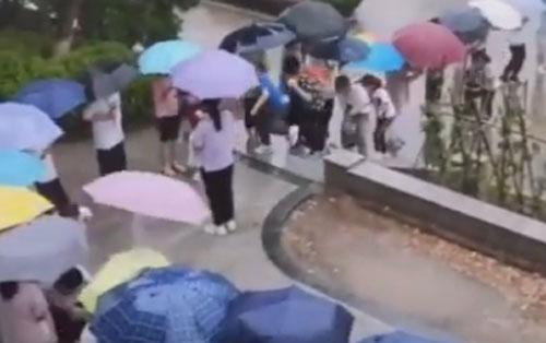коридор из зонтов для школьников