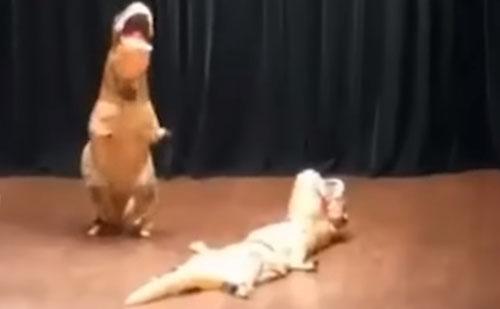 динозавр без сознания на сцене