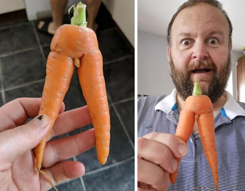слишком анатомическая морковка