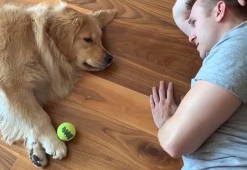 ленивая игра в мяч