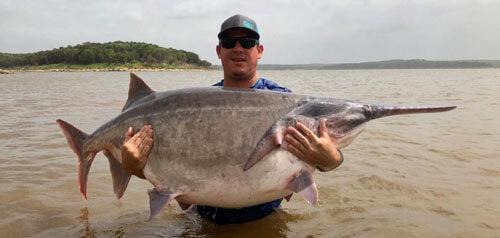 очень крупная рыбина
